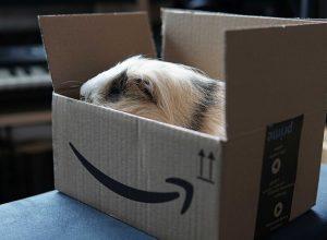 Amazondan Alışveriş Yapmak
